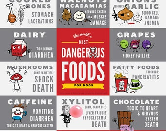 The World's Most Dangerous Food For Dogs - Magnet