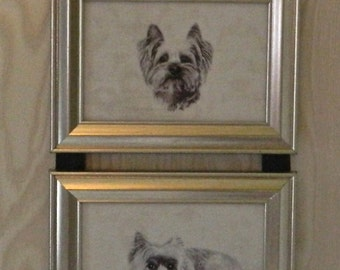 Yorkshire Terrier Yorkie Dog Picture Frame Collage Wall Hanging