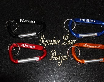 Carabiner Keychain - Not for Climbing