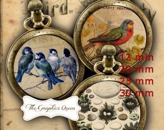 12 mm and 25 mm, 1 inch Vintage Birds Digital Collage Sheet Instant Download Shabby Chic Button Bottle cap Images for Jewelry