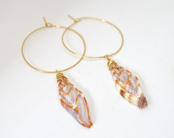 Shell Hoop Earrings, Gold Hoop Shell Earrings, Mitra Shell Hoops, Thin Gold Hoops, Beachy Earrings