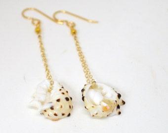 Shell earrings, Gold chain earrings, Drupa shell earrings, Dangling earrings