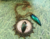 Jewel Beetle Pendant with Real Beetle Wing Charm in Brass Setting