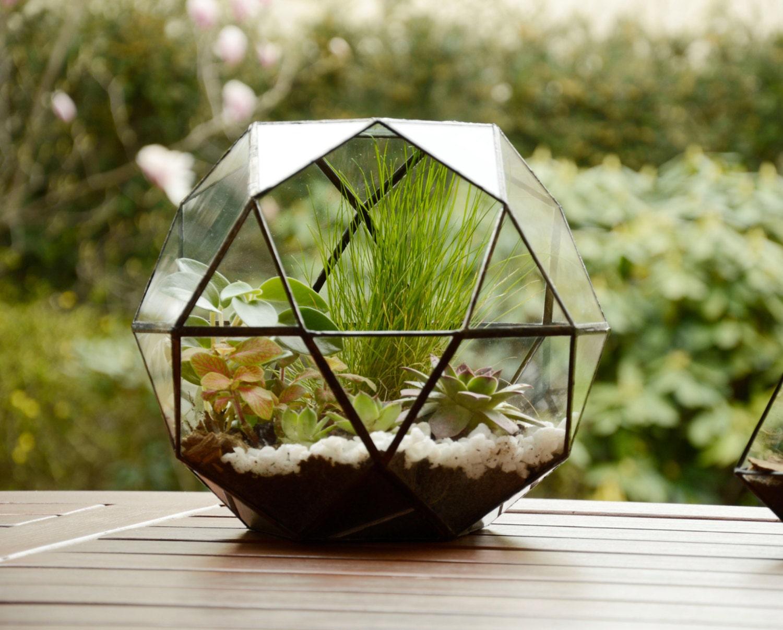 large glass terrarium glass terrarium geometric terrarium. Black Bedroom Furniture Sets. Home Design Ideas
