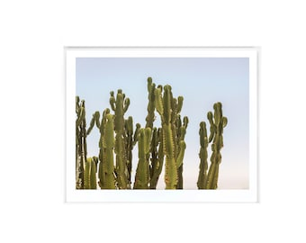 Cactus print cacti art cactus photo minimal photo desert for Minimal art vzla
