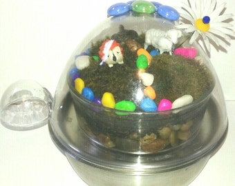 Repurposed And Whimsical Egg Cooker Terrarium With Live Moss, Moss Garden, Handmade, Moss Terrarium, Low Care Planter, Made By Mod.