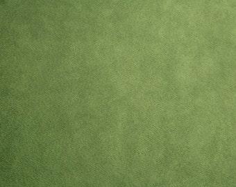 Solid Cuddle 3® Kiwi Shannon Fabrics