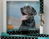 Personalized Pet Portrait in a Keepsake Shadow Box (Name added, tags & a collar fit easily inside the frame)