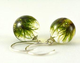 Green Earrings with Moss, Moss Jewelry, Silver Jewelry, Resin Jewelry, Green Earrings, Delicate Earrings, Silver Earrings, Moss in Resin