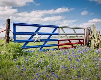 Texas Bluebonnets - Bluebonnet Art, Bluebonnet Print, Texas Photography, Texas Wall Art, Travel Photography, Landscape, Fine Art Photography