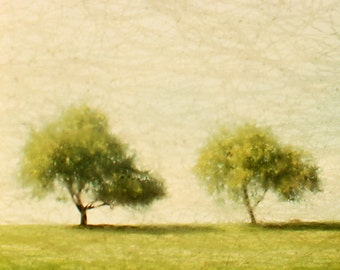 Twin Trees Fine Art Photography Wall Photo Print, Yellow Tree Sky Green Grass Leaves Leaf Spring Summer Nature Landscape