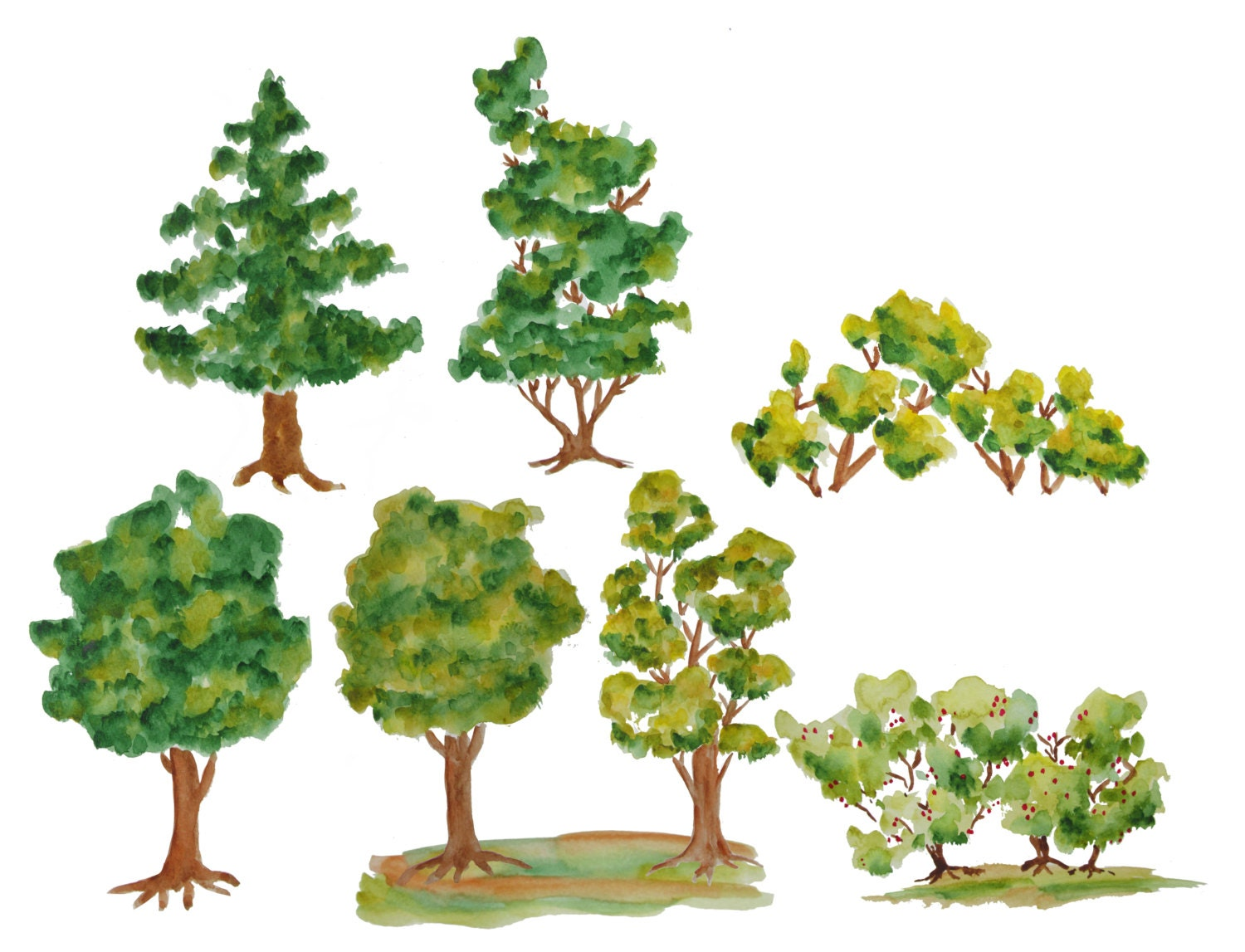 Greece Paint Trees White