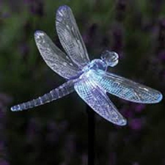 Philips Led String Lights Dragonfly : Solar Dragonfly LED String Light 10 Piece Go by DrawStringDr