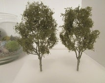 "2 (3"") Miniature Trees, Green Gum Tree, Terrarium Craft Tree"