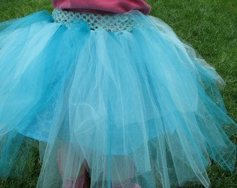 A Pretty Blue Shaded Tutu.