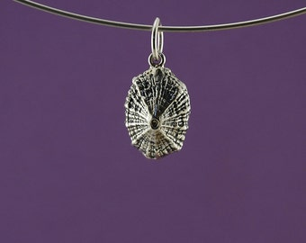 Limpet Shell Pendant in 925 Sterling Silver