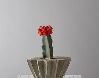 Concrete Succulent/Cacti Plant Pot