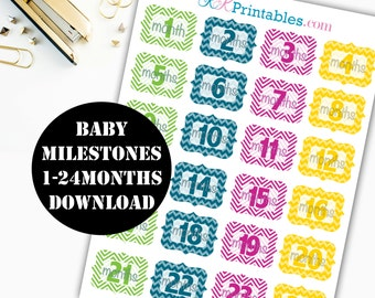 Baby Milestones 1-24 Mos. Printable Planner Stickers / Erin Condren Printable / Plum Paper Printable / Planner Insert Digital Download 00037