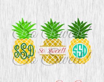 Pineapple SVG / DXF Monogram Frames for Silhouette Cut File Split Frame Pineapple Circle Monogram Frame Tropical Hawaiian Summer Monogram