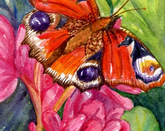 Butterfly watercolor painting original, butterfly 5 x 7 original watercolor painting of butterfly, butterfly art