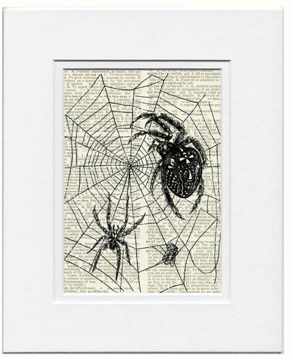 spider web dictionary page print