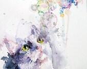 Cat Art Print. Cat Lover Art. Cat Watercolour Print. White Cat Print. Cat Wall Art. Bubbles.