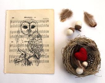 Barn Owl Gocco Print on Vintage Music