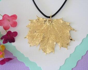 Gold Leaf Necklace, Real Leaf, Sugar Maple Leaf Pendant, Gold Maple Leaf Necklace, Real Leaf Necklace, 24kt Gold Dipped Leaf, LL117