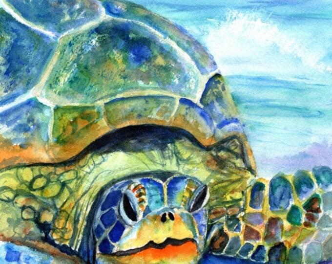 Kauai Sea Turtle - 5 x 7 Giclee art print - Hawaiian honu print - Whimsical art for kids - children wall art - tropical sea life art print