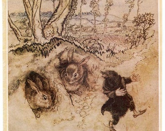 Vintage 1930's Onion-Sauce  Wind in Willows Illustration Bookplate Print for Framing w Mole and Rabbits, Arthur Rackham Illustraion