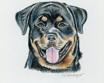 Dog Lover Gift, Rottweiler Dog Colored Pencil Drawing, small dog art, dog wall art, dog decor
