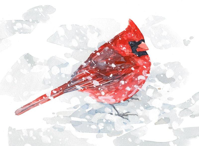 Red Cardinal In Snow Watercolor Painting 5x7 Bird Art Print