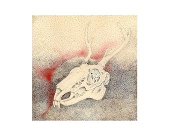 Mythical Creature Skull Illustration Print - Wolptertinger