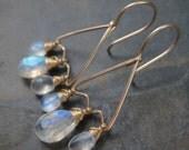 Sri Lanka Blue Moonstone - Faceted Briolette Chandelier Earrings - 14kt Gold Filled