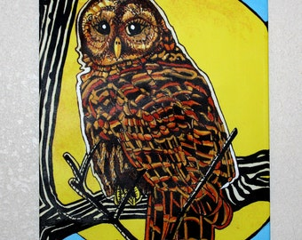 Barred Owl In the Moonlight - HANDPAINTED Canvas Print - 11x14 inches