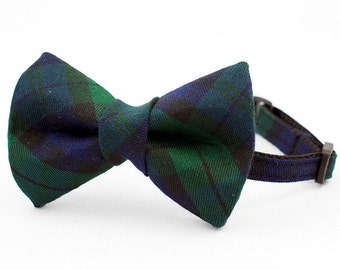 Cat Bow Tie Collar Green and Navy Tartan