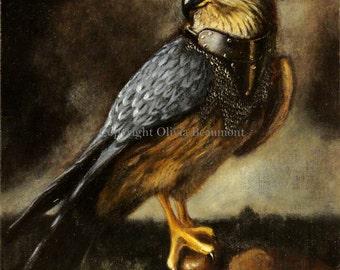 """Merlin Hawk - """"Merek"""" - 8x10 print"""