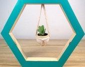 Hanging Plant - Turquoise