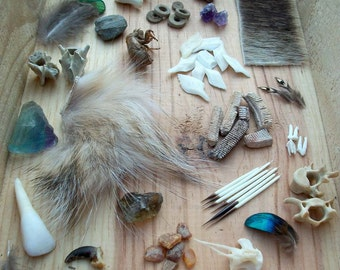 Curiosity Collection Grab Bag - 20 Pieces