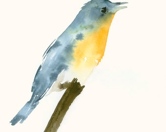 Original Watercolor Painting Study Blue and Orange Bird