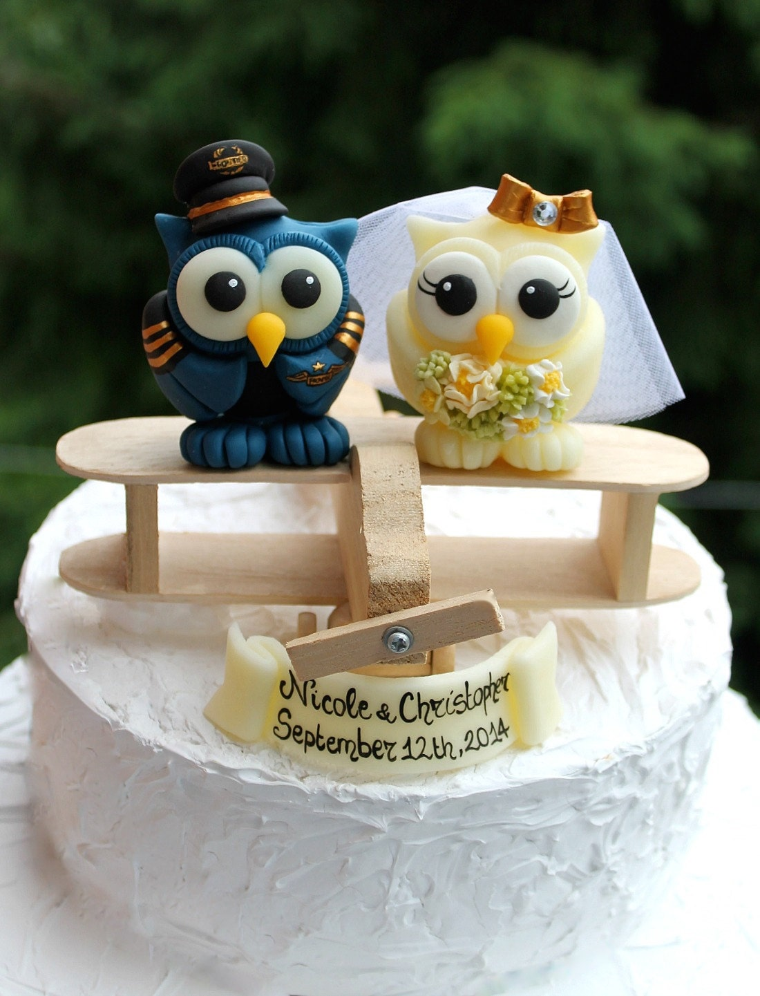 Plane Wedding Cake Topper Owls Love Birds Bride And Groom