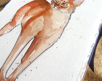 Abyssinian Cat Original Painting