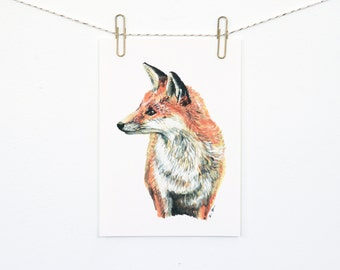 Fox 5x7 Art Print - Red Fox Woodland Giclée Print