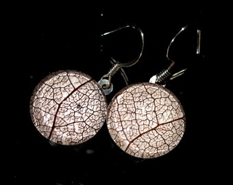 Skeleton Leaf of Salal Circle Glass Earrings, leaf jewellery, woodland, rustic, forest, plant jewelry, surgical steel