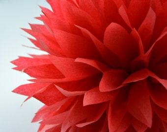One Scarlet Tissue paper Pom Poms // Wedding Decorations // Party Decorations // Pom Poms