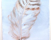 Feather paintng. Watercolor paintings original only. Pale blue feather illustration 7,5 by 11''/ Home decor/ Birtday gifts for him