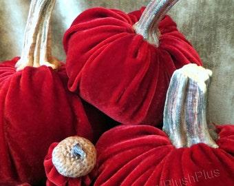 Velvet PUMPKINS & Velvet ACORNS - Real Pumpkin Stems and Real Acorn Caps - Cranberry