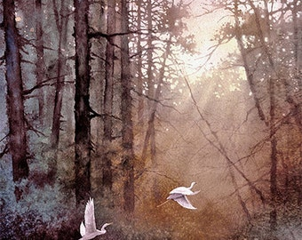 Wildlife Art Print of Watercolor Painting - Birds, Egrets, Trees, Lake, Sunrise