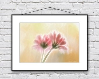 Floral Wall Art - Pink Flower Photography - Flower Photo Print - Surreal Photography - Fractal Wall Decor - Gerbera Photograph