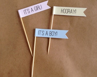24 It's a Boy / It's a Girl Cupcake Topper / Food Pick / Banner on Stick / Baby Shower / Wedding Shower / Personalized Cupcake Topper